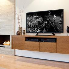 Contemporary Living Room by Ryan Duebber Architect, LLC
