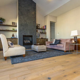 Transitional light wood floor living room photo in Austin