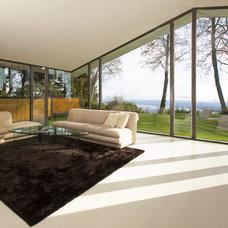 Modern Living Room by Meister Construction Ltd