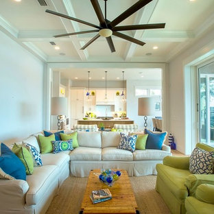 Family Rooms and Living Rooms