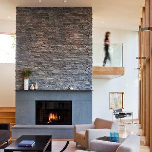 Modernes Wohnzimmer mit weißer Wandfarbe und Kamin in Minneapolis