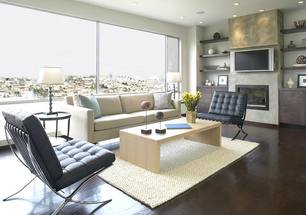 Cool Modern Living Room by Feldman Architecture Inc