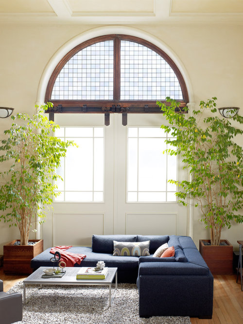 Eclectic living room idea in San Francisco with light hardwood floorsLiving Room Plants   Houzz. Living Room Plants. Home Design Ideas