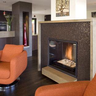サンフランシスコのコンテンポラリースタイルのおしゃれなリビング (タイルの暖炉まわり) の写真