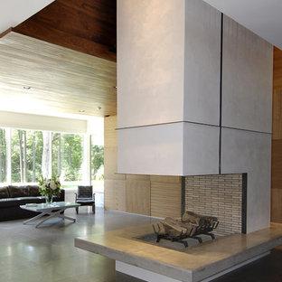 ニューヨークのモダンスタイルのおしゃれなLDK (フォーマル、白い壁、テレビなし、両方向型暖炉) の写真