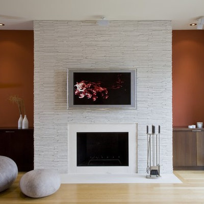 Living room - contemporary living room idea in DC Metro with a standard fireplace and a wall-mounted tv