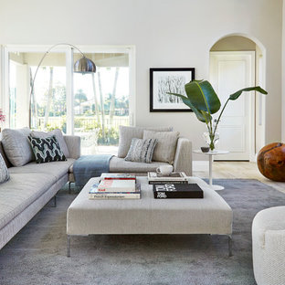 Transitional light wood floor living room photo in Miami with gray walls