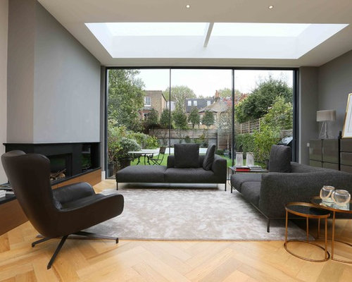 living room skylight houzz