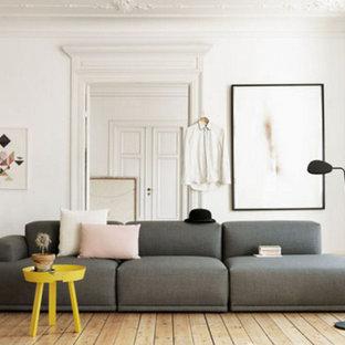 3 Sofa Living Room Ideas & Photos   Houzz