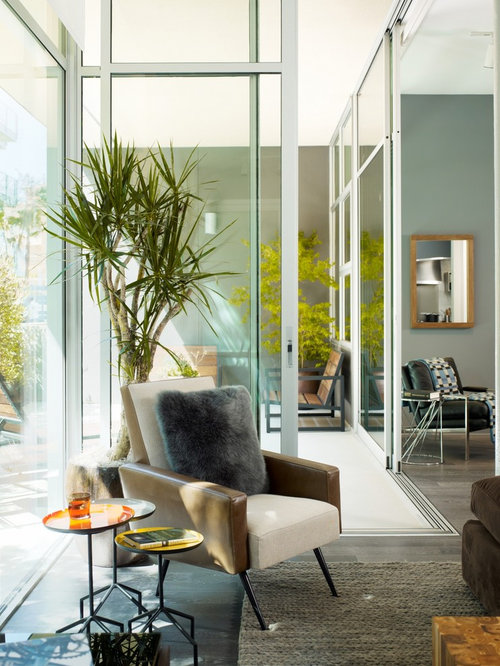 Contemporary Tall Indoor Plants Houzz