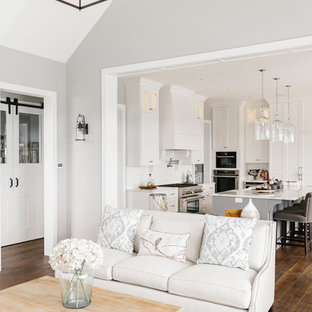 Example of a transitional living room design in Minneapolis
