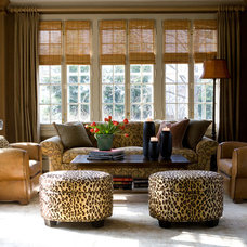 Traditional Living Room by Stephanie Wohlner Design