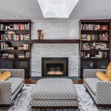 Fireplace Insert