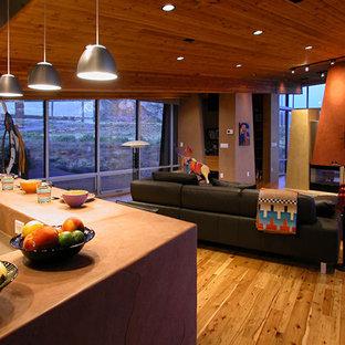 デンバーのコンテンポラリースタイルのおしゃれなLDK (オレンジの壁、無垢フローリング、両方向型暖炉、壁掛け型テレビ) の写真