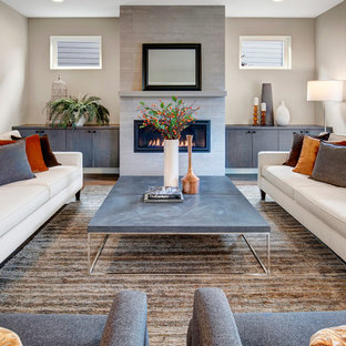 Trendy formal living room photo in Seattle with gray walls and a ribbon fireplace