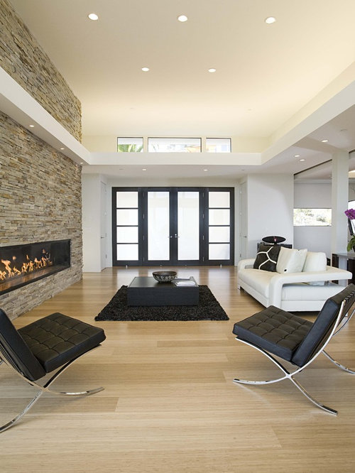 example of a minimalist bamboo floor living room design in san francisco with a ribbon fireplace - Bamboo Living Room Decor