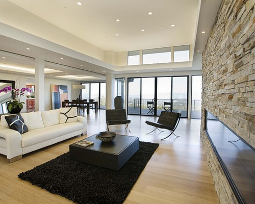Fireplace fascia home design ideas pictures remodel and decor - Sejour moderne decoration ...