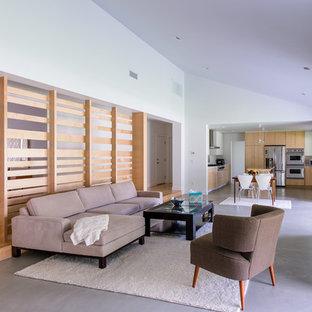 Foto di un ampio soggiorno design aperto con TV a parete, sala formale, pareti bianche, pavimento in cemento, camino bifacciale e cornice del camino in intonaco