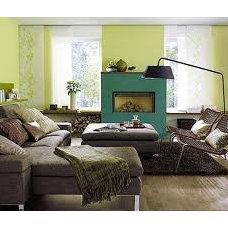 Contemporary Living Room green living room