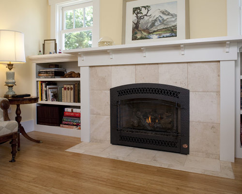 Fireplace Xtrordinair Ideas, Pictures, Remodel and Decor