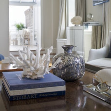 Transitional Living Room by Tiffany Eastman Interiors, LLC