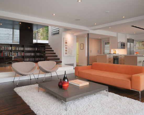 Modern Furniture Design For Small Living Room small modern living room design ideas, remodels & photos | houzz