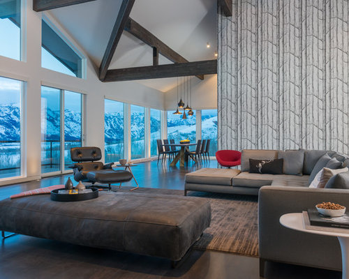Grey living room design ideas renovations photos with for Multi color living room ideas