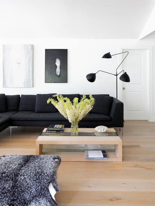 Light Wood Floor Living Room Houzz