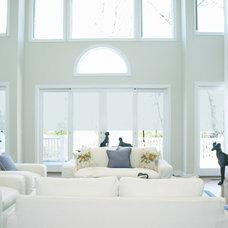Transitional Living Room by Barbara Feldman Interior Design