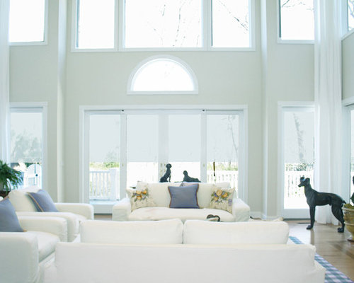 Transitional Living Room Photo In New York. Save Photo. Barbara Feldman Interior  Design
