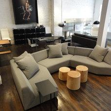 Modern Sofas by Haute Living