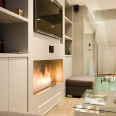 Contemporary Living Room by EcoSmart Fire