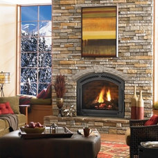 Traditional Living Room by Heat & Glo Fireplaces: Designed to Inspire