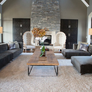 Charmant Living Room   Transitional Living Room Idea In Cedar Rapids With Gray Walls