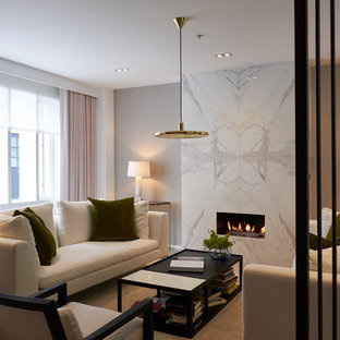 Design ideas for a medium sized modern living room in London with a reading nook, grey walls, a ribbon fireplace and a stone fireplace surround.