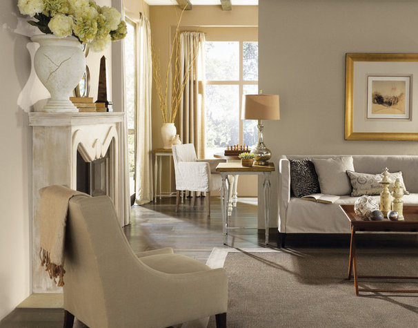 Traditional Living Room by Sherwin-Williams