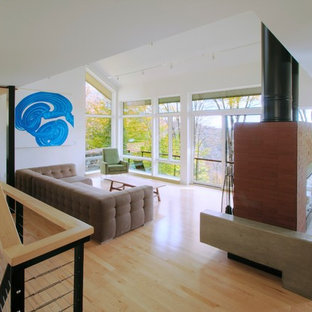 Inspiration for a modern living room remodel in Burlington with white walls and a two-sided fireplace