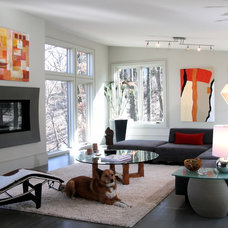 Contemporary Living Room by Ware Design LLC