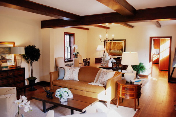 Traditional Living Room by Ireland-May Ltd
