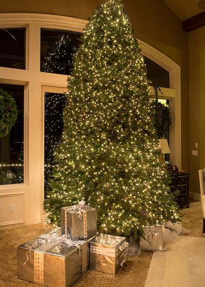 how to care for a freshly cut christmas tree. Black Bedroom Furniture Sets. Home Design Ideas