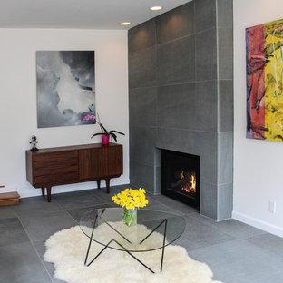 バーリントンの中サイズのコンテンポラリースタイルのおしゃれなLDK (フォーマル、白い壁、標準型暖炉、石材の暖炉まわり、青い床) の写真