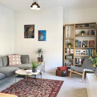 Foto di un piccolo soggiorno scandinavo chiuso con pareti bianche, pavimento in cemento, TV autoportante e pavimento grigio