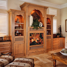 Traditional Living Room by Furniture Design Gallery Inc