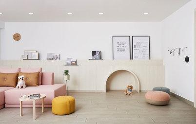 Visite privée : L'appartement idéal d'un couple et de ses chiens