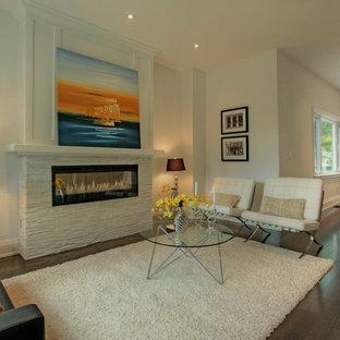 Idee per un soggiorno moderno con cornice del camino in pietra