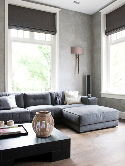 Example Of A Danish Living Room Design In Amsterdam With Gray Walls