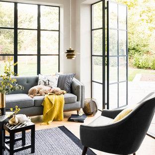 Ispirazione per un soggiorno design con pareti grigie e parquet chiaro
