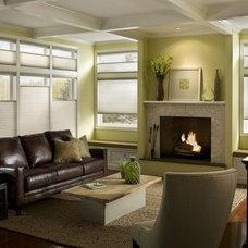 Contemporary Living Room by Lisa Scheff Designs