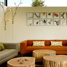Contemporary Living Room by Schwartz and Architecture