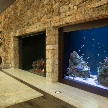 In -wall custom aquarium fireplace-adjacent